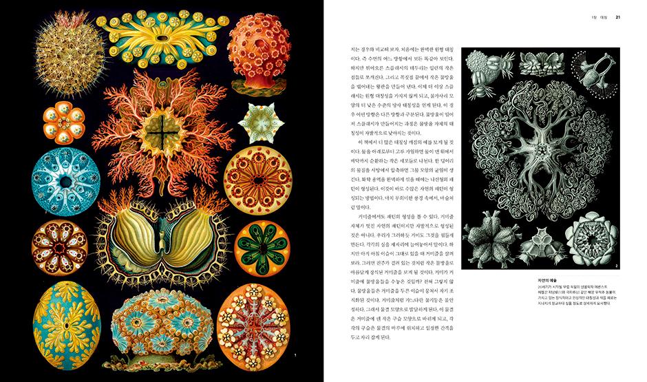 8ae95b0148d 자연의 패턴 | 사이언스북스